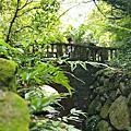 亞亞的登山紀行《虎山自然步道》