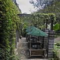 國內旅遊●苗栗縣三義鄉綠葉方舟餐廳