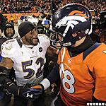2012-13 NFL 季後賽
