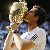 2013 溫布敦網球錦標賽