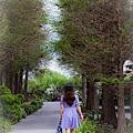 田尾菁芳園