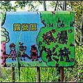 20150606-五峰楓櫻杉林露營