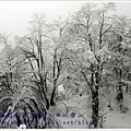 2011成都_西岭雪山玩雪