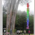大雪山國家森林遊樂區二日遊