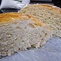 No-Knead Bread 免揉歐式麵包