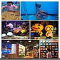 花蓮七星柴魚博物館