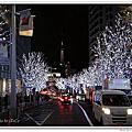 2013.12.21 日本東京.冬Day2.築地、国立美術館PAULBOCUSE、AOKI、HARBS、六本木-櫸樹坂道 、KITTE