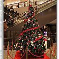 2013.12.22 日本東京.冬Day4.銀座、晴空塔-夜訪
