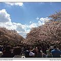 2014.04.05 日本東京.春賞櫻Day4.上野公園、清水觀音堂