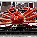 2010.08.29日本關西之旅Day3-【螃蟹道樂】螃蟹專門料理店