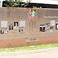 Q2025 廣島鯉魚隊將在8月6日全員換上PEACE球衣