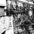 20110311 栗松溫泉-多良-脫線雞場-天龍飯店-六口溫泉