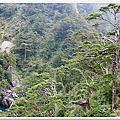 2014福壽山露營