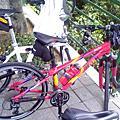 單車 2009.06.27 小巨蛋2關渡宮
