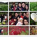 20140323陽明山採海芋