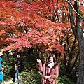 [旅遊]大阪京都Day4~5 大賞楓