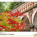 日本 / 2005 紅葉之旅 - Day 1~6 京都