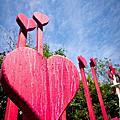 2012-01-29安妮公主花園