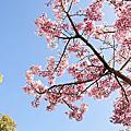 2011-02-27沐心泉
