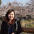 980405~0409四國、關西地區櫻花之旅