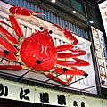 95 日本花見之旅