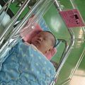 090123小姪子誕生