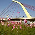 20100228_大佳河濱公園