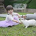 To House兔子親子庭園餐廳