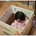 小米寶貝(1歲1M~3M)