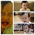 小米寶貝(9~12個月)