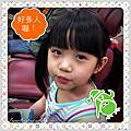 201205 哀鳳雜拍