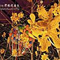 2014.03.13(2014蘭展.蜀葵花.北門)