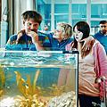 20200624《金魚俱樂部》