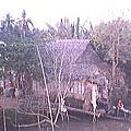 越南舊照片2001~2003