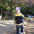 2008年9月~2009年1月初在日本