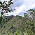 [瑞芳三星] 蛇子崙山、三爪子坑山、八分寮山
