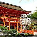2016春 桜の足跡在京都~洛北