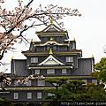 2016春 桜の足跡在岡山