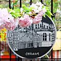 2016春 桜の足跡在大阪