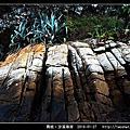 青岐沙溪海岸