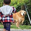 2014.8.23 桃園復興-拉拉山觀星露營區