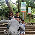 2017桃園南崁羊稠看甲蟲