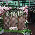 【辦桌場地】規劃你的森林婚禮
