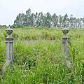 1935年張堪等六人合葬墓(后里賢坂張家祖墓):421台中市后里區圳寮路79巷