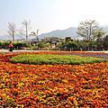 2013 台中新社國際花毯節