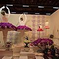 2014年台中世貿中心蘭花展
