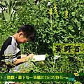 2010柴山生態小學堂