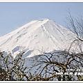2009の日本自由行-03/10 DAY6