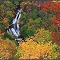 2008.10.28‧中禪寺湖~霧降區域