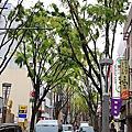 2009.4.24‧皇居前廣場‧神樂坂